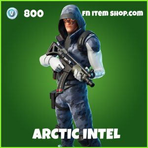 arctic intel uncommon fortnite skin